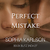 Book Blitz - Excerpt & Giveaway - Perfect Mistake by Sophia Karlson