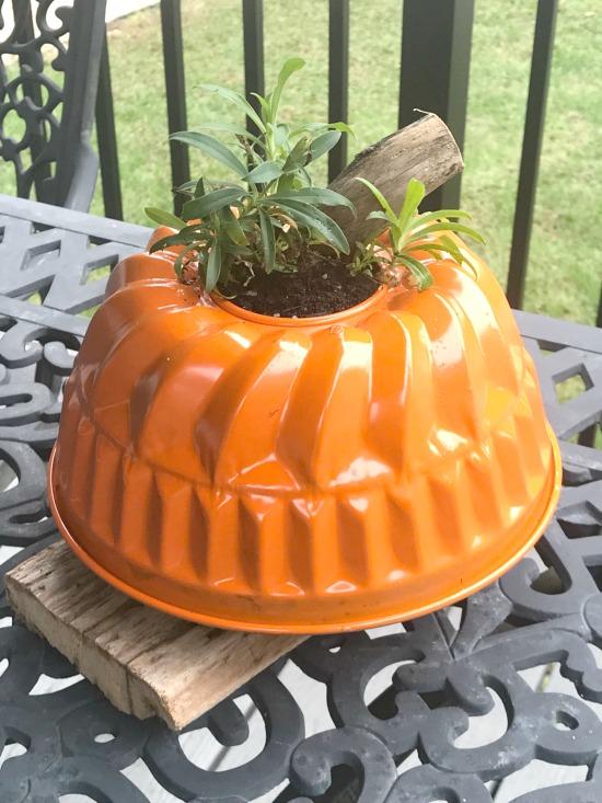 bundt pan planter with plant