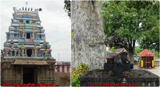 Thirupattur Kashi Vishwanathar Temple