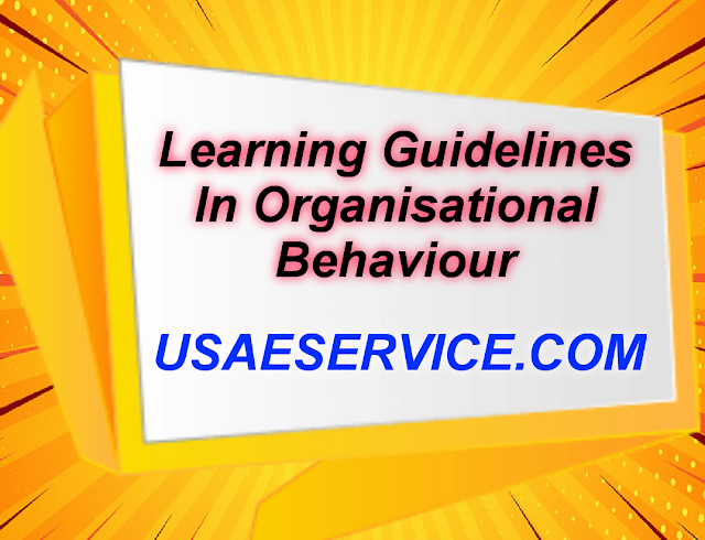 Learning Guidelines In Management Study