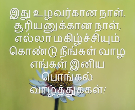 Top 100 Tamil Status for Whatsapp Quotes in Tamil Language
