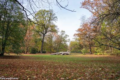 Park Południowy Wrocław