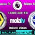 Prediksi Wolverhampton Wanderers vs Brighton Hove Albion — 7 Maret 2020