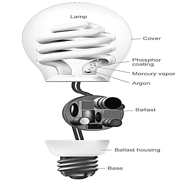 What Is Fluorescent Lamp  Working Principle Of Cfl