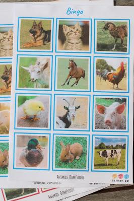 Jogo do bingo, com os animais domésticos