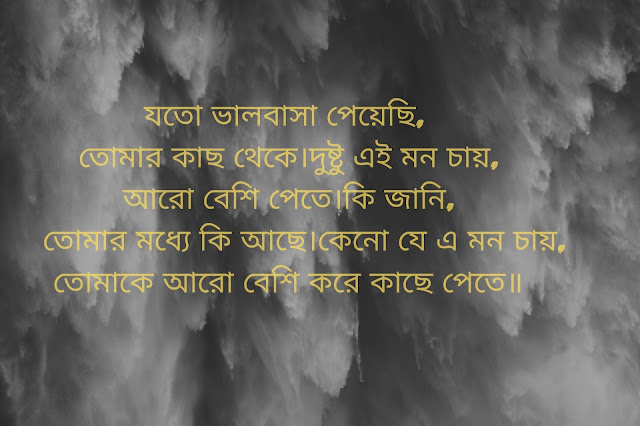 bengali shayari on love