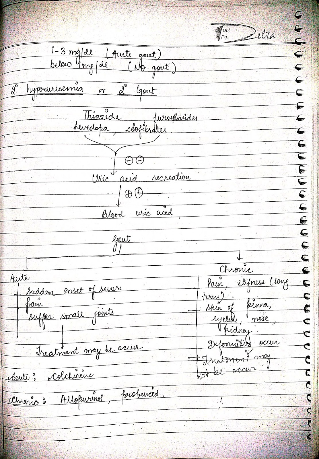 pathophysiology - gout