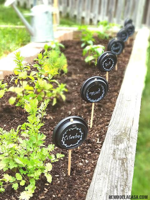 DIY - vegetable/herb garden