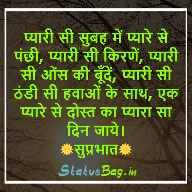 Good Morning Lines In Hindi For Whatsapp