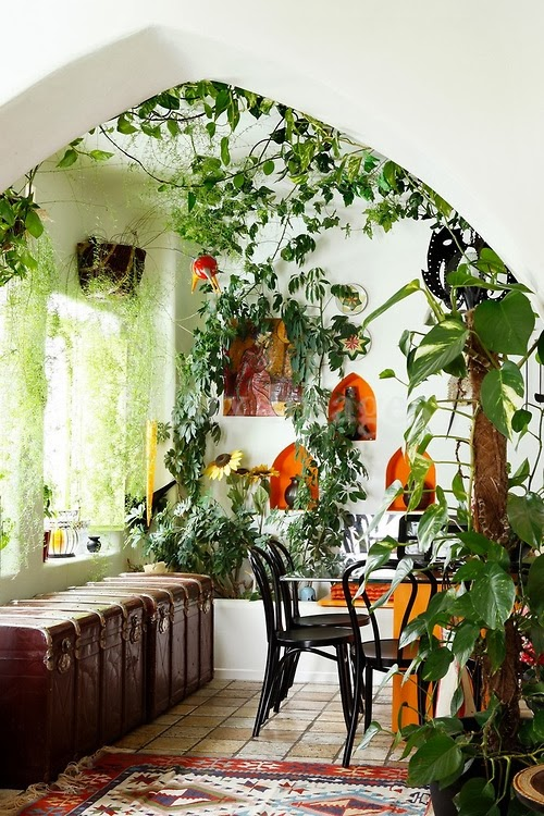 Garden Design Ideas:  Indoor Gardening Idea