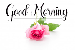Good Morning Royal Images Download for Whatsapp Facebook39