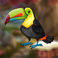 AvmGames Cute Toucan Bird…