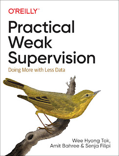 Practical Weak Supervision PDF