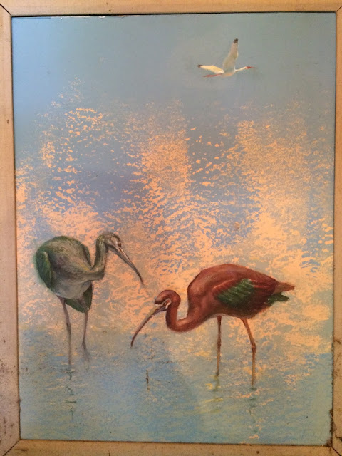 Ibis image, Ibis painting, bird ibis image, Quirk Art, Quirk Painting From Nature