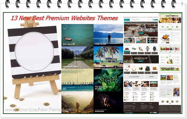 Best Premium Websites Themes