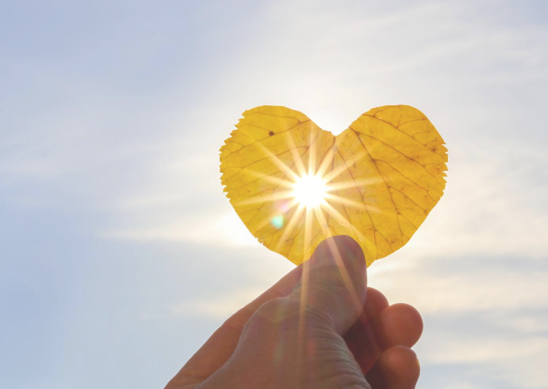 Holding up a leaf to the sky in a post about setting my monthly goals for September 2020