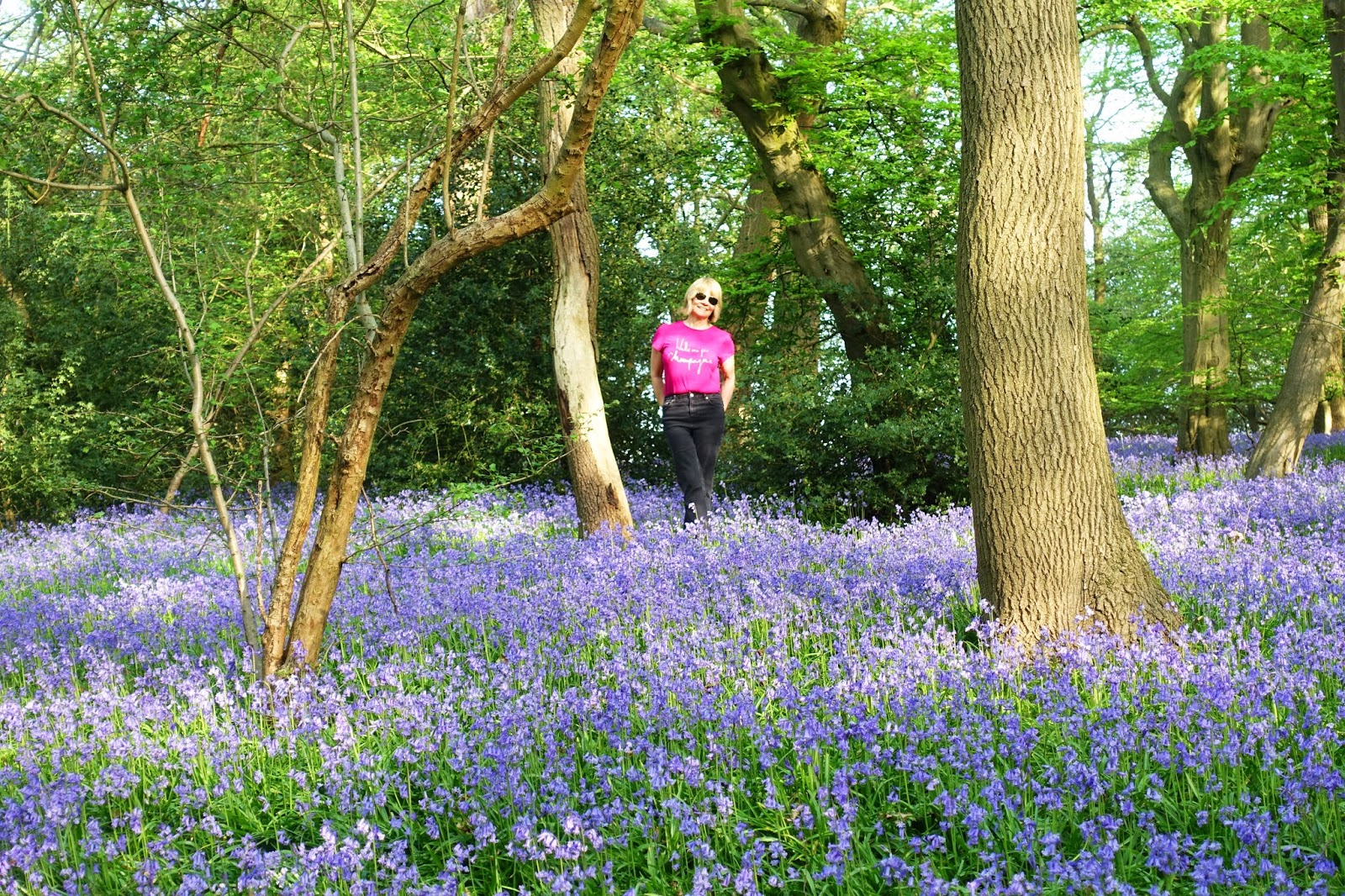Is This Mutton? blogger Gail Hanlon on the annual bluebell wood walk