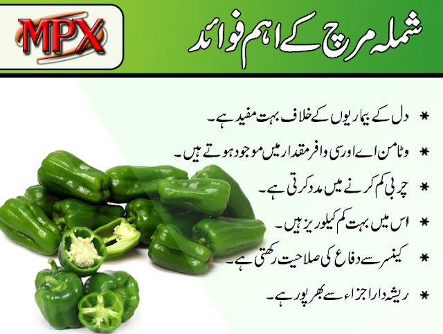 Shimla Mirch K Faidy Benefits Of Capsicum In Urdu