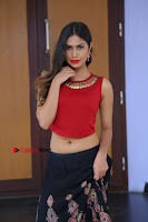Telugu Actress Nishi Ganda Stills in Red Blouse and Black Skirt at Tik Tak Telugu Movie Audio Launch .COM 0197.JPG