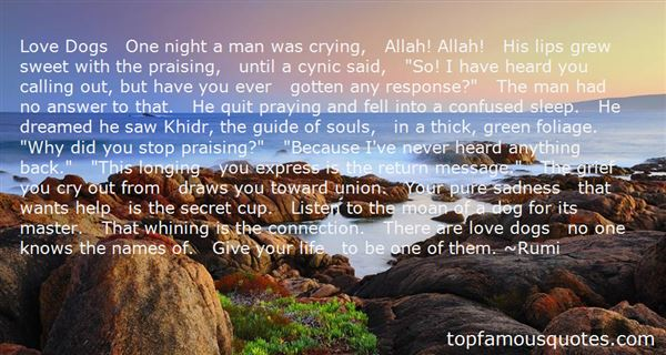 A little History - Islamic Quotes