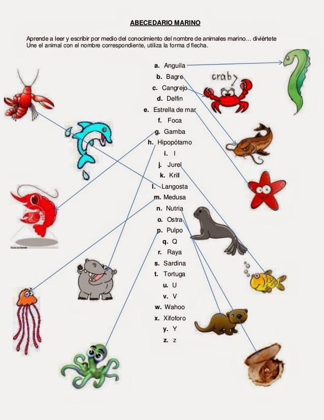 Nombres De Animales En Inglés Con Imágenes Material Para Maestros