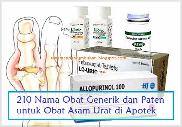 Obat Generik dan Paten untuk Obat Asam Urat di Apotek