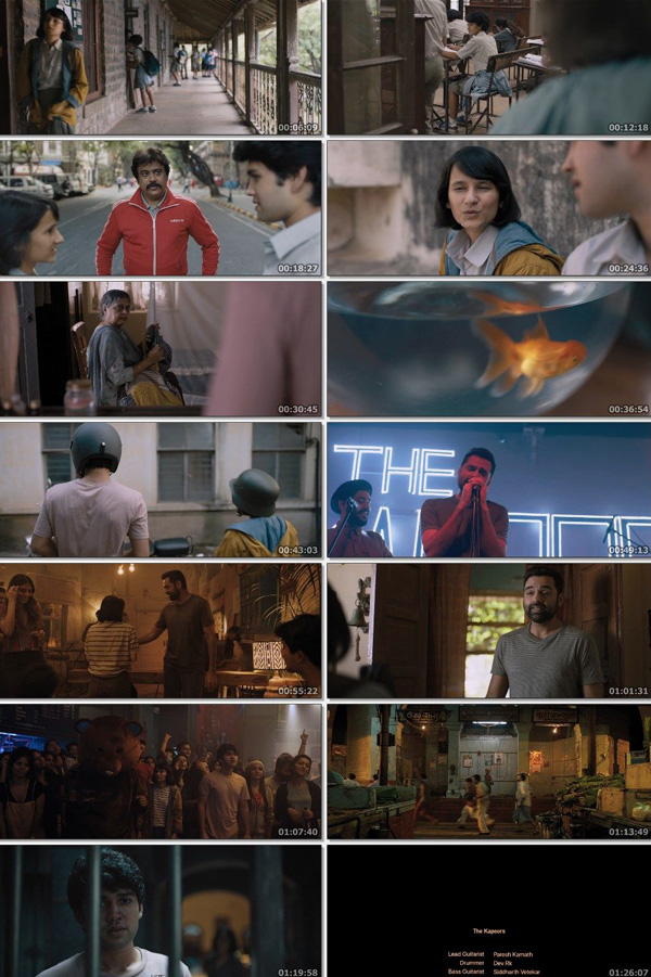 Download What are the Odds 2020 ORG Hindi 480p HDRip 300MB ESubs movie