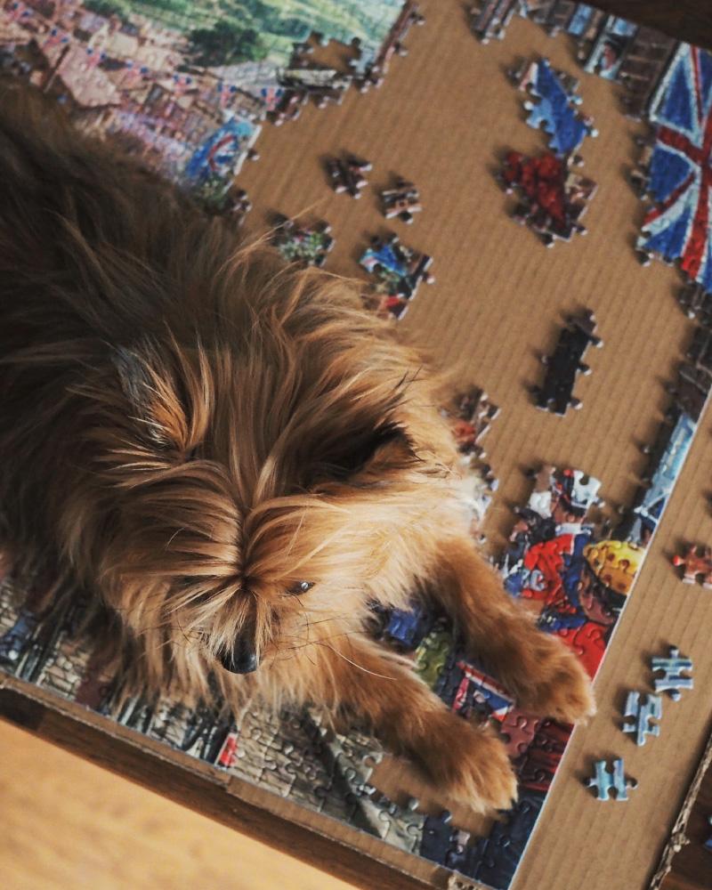 Activité slow et cocooning : faire un puzzle