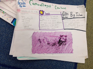 Students create their own evidence of reading using the Depth and Complexity icons and creativity!