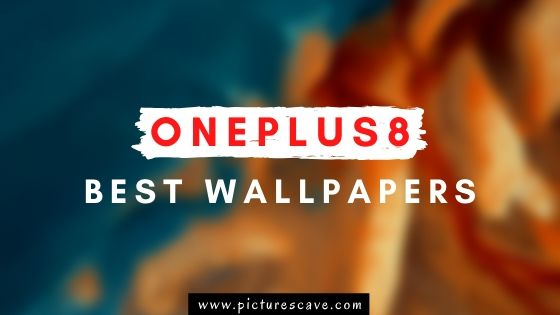 Top 20 Best OnePlus 8 Wallpapers