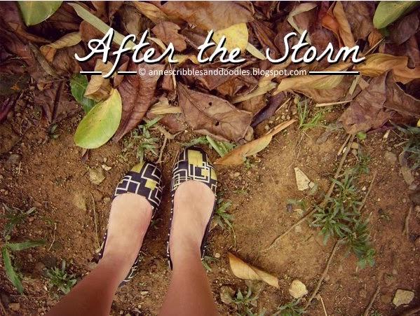 After the Storm (Yolanda aka Haiyan)