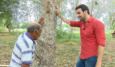 O repórter Teo Taveira visita área de seringueiras em Fordlândia - Crédito/Foto: Divulgação/RedeTV!