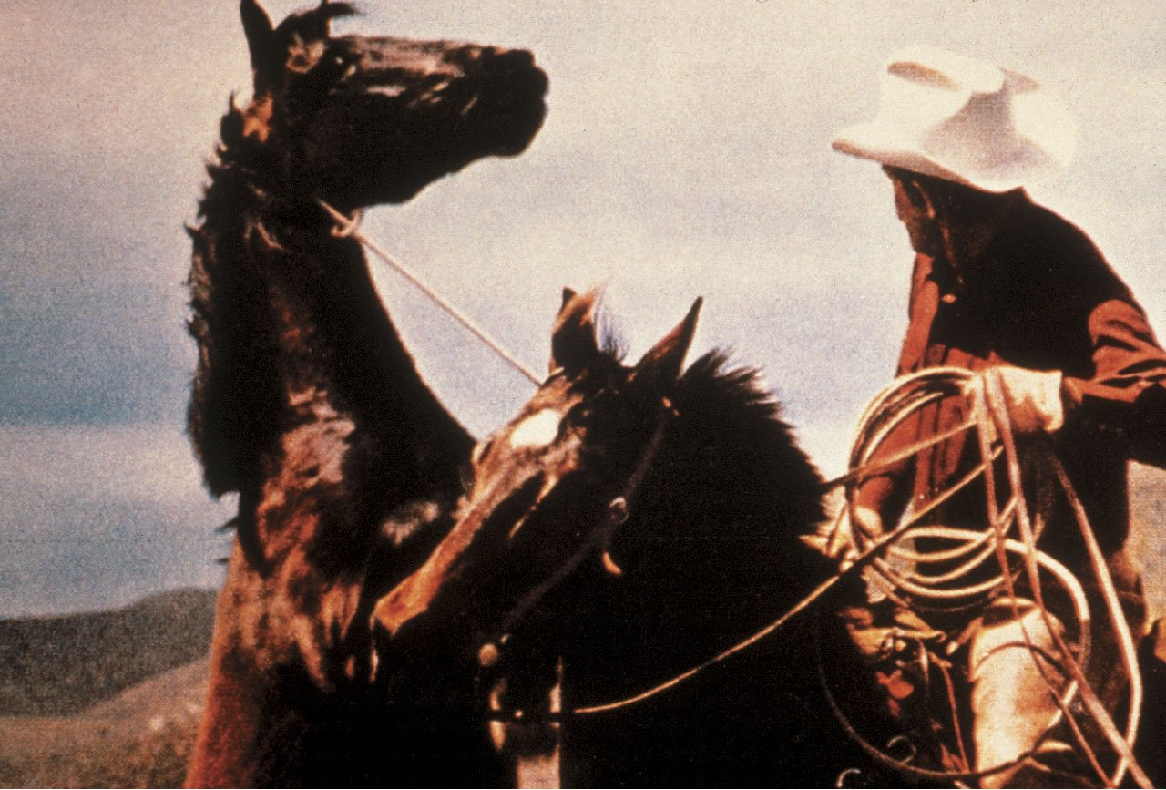 Heart Fairs: More Than Special: Richard Prince Cowboys