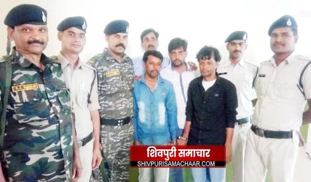 मार्शल कार से कर रहे थे गांजे की तस्करी, 15 किलो गांजे के साथ तीन दबौचे | Shivpuri News