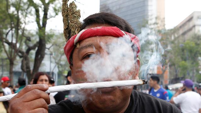 Avanza legalización de la marihuana en México con fines recreativos