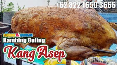 Murah Berkualitas ! Bakar Guling Domba di Lembang,bakar guling domba lembang,guling domba lembang,guling domba,