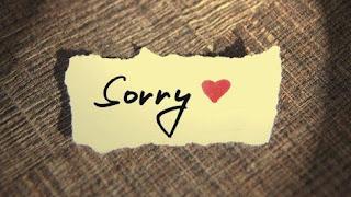 Sorry Status in English