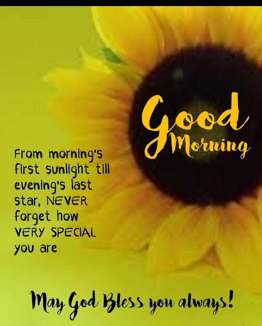 """""""good morning blessings, friday"""" """"good morning blessingssunday"""" """"good morning blessingsmonday"""" """"good morning blessings tuesday"""" """"good morning blessings wednesday"""" """"good morning god bless you and your family"""" """"morning faith quotes"""" """"morning joy quotes"""" """"jesus morning quotes"""" """"morning silence quotes"""" """"wednesday morning blessings quotes"""" """"good morning blessings friends"""" """"good morning wish with god"""" """"funny good morning blessings"""" """"good morning blessings pic"""" """"good-morning blessings sunday gif"""" """"good morning have a blessed day gif"""" """"good morning friday blessings gif"""" """"good afternoon blessings gif"""" """"good morning god bless images in hindi"""" """"good morning love god"""" """"good morning god bless you friday"""" """"good morning blessing to someone special"""" """"blessing your day meaning"""" """"evening blessings"""" """"good morning love and blessings"""" """"afternoon blessings"""" """"may god keep you safe quotes"""" """"good morning temple"""""""