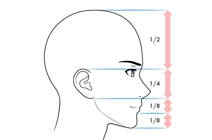 Anime laki-laki wajah proporsi tampilan samping ekspresi tersenyum
