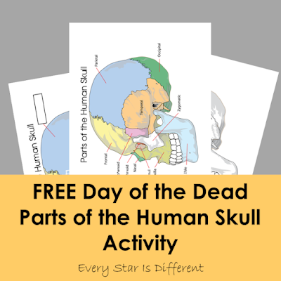 FREE Day of the Dead Parts of the Human Skull Activity