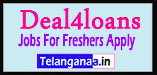 Deal4loans Recruitment 2017 Jobs For Freshers Apply