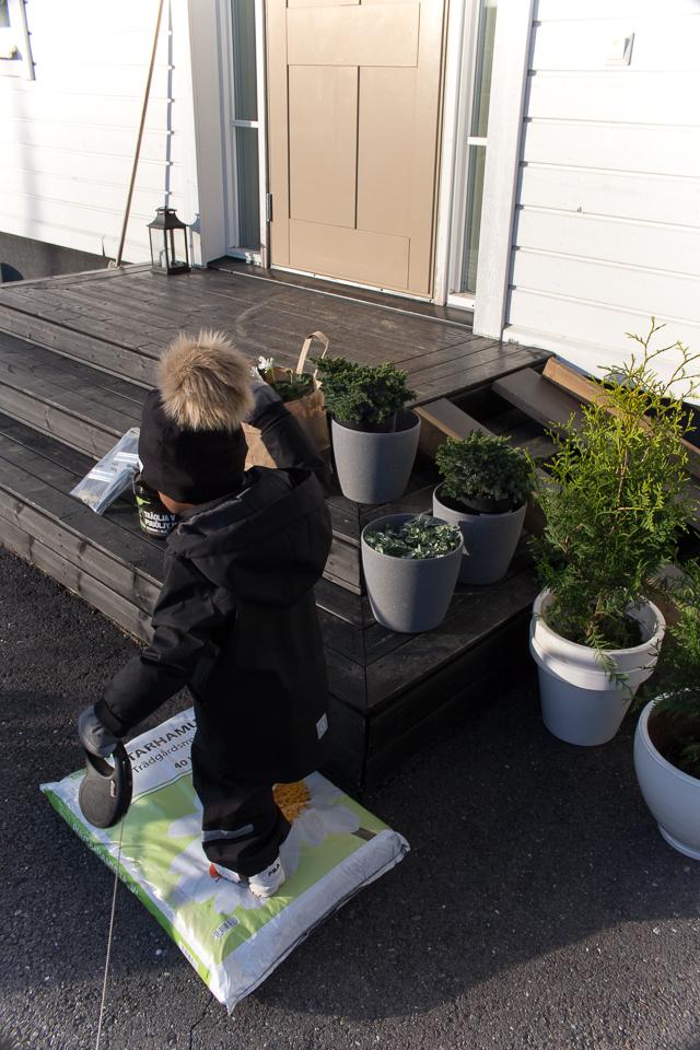 Villa H, etukuisti, musta kuisti, sisääntulo, viherkasvit, pelargonia