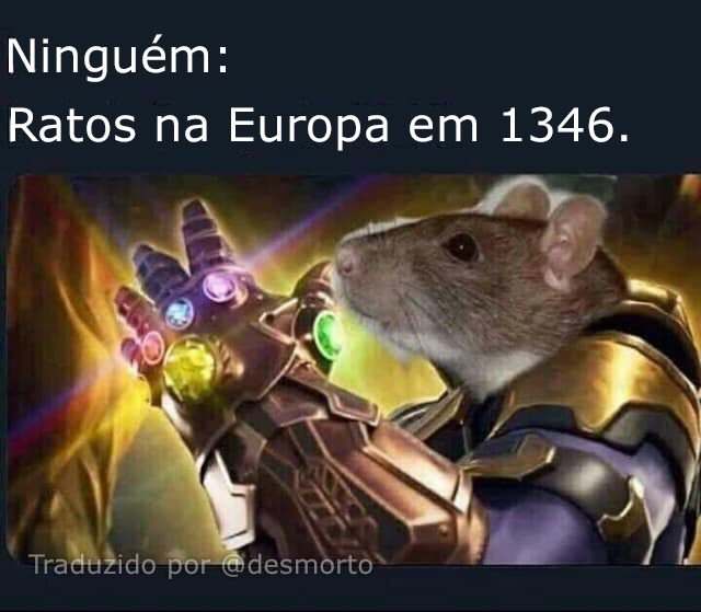 Ratos do infinito