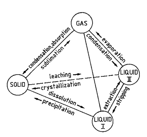 Model of a four-phase system consisting of two liquid phases