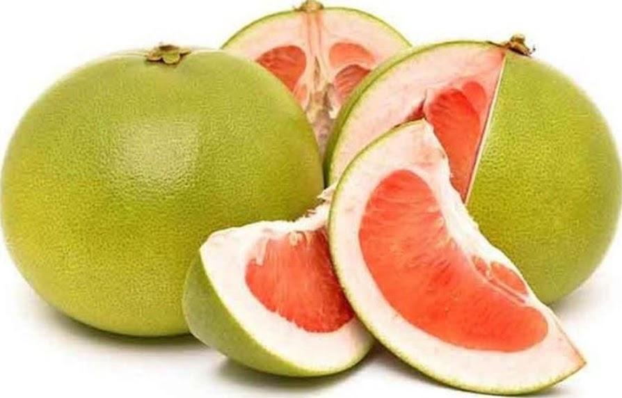 bibit jeruk bali Depok