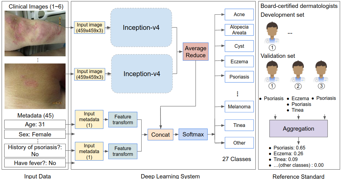 Using Deep Learning to Inform Differential Diagnoses of Skin Diseases
