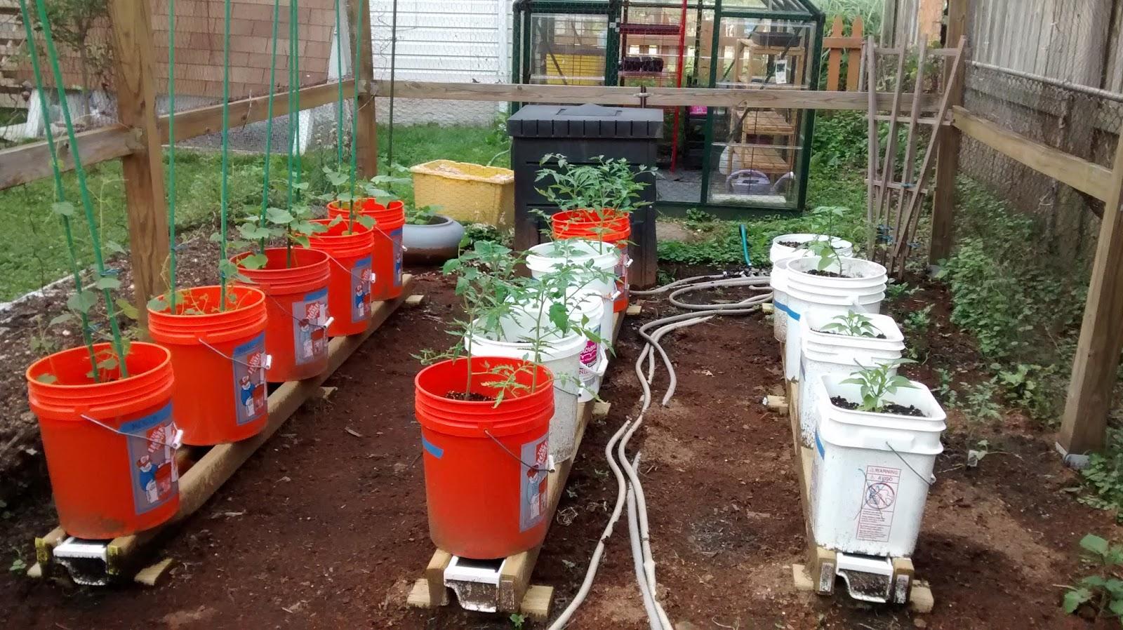 Rain Gutter Grow System Update