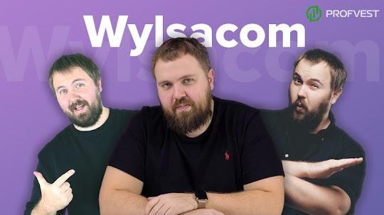 Сколько зарабатывает – Wylsacom