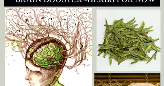 Natural Brain Boosts – That Work Now