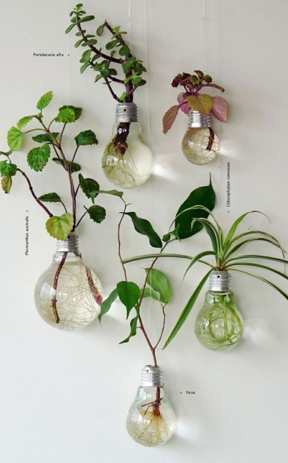 Easy crafts to use as a modern plant pot